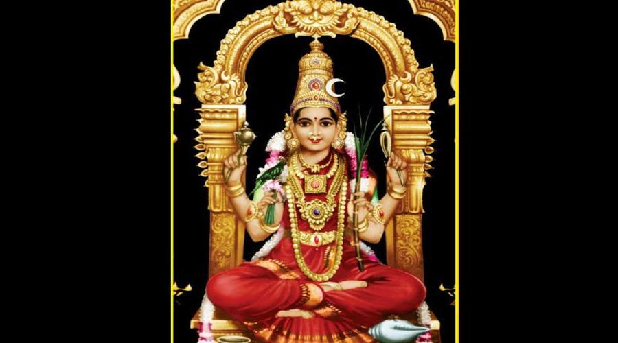 Travel & Registration Grant For Conference On The Shakta Tantras